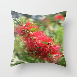 Calliandra Haematocephala Red Powderpuff  Throw Pillow