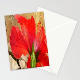 Back Of A Red Hibiscus Flower Against Stone Stationery Cards