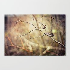 Wooded Canvas Print