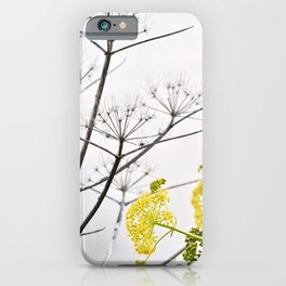 YELLOW WILD-FLOWERS of Sicily iPhone Case