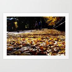 Central Park Leaves Art Print