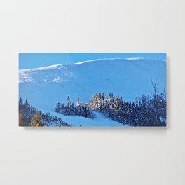 Above the Treeline, Mount Hog's Back Metal Print