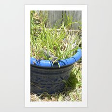 pot of grass Art Print