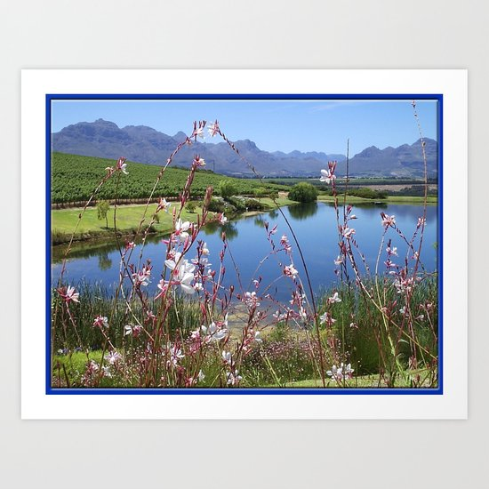 Cape Wineland Art Print