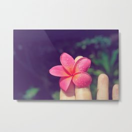pua melia pink tropical plumeria hawaii Metal Print