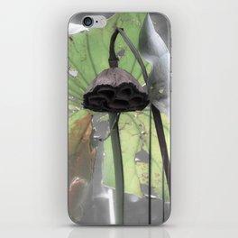 Water Plant Edit iPhone Skin