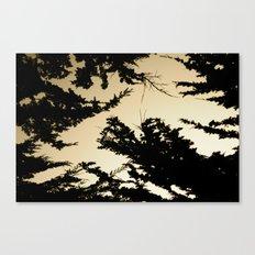 Exploration Canvas Print