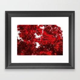 RED China Framed Art Print