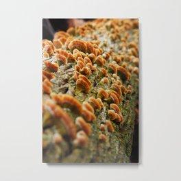 Bright Orange Springtime Shrooms Metal Print