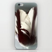 tulip iPhone & iPod Skins featuring Tulip by KunstFabrik_StaticMovement Manu Jobst