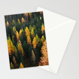Autumn Lines (Nature Photography) Stationery Cards