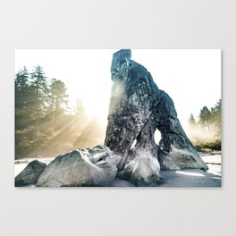 Protector Of Ruby Beach Canvas Print