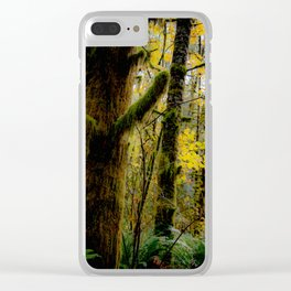 Forest Sunight Clear iPhone Case