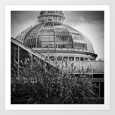 'Allen Gardens 2' Art Print