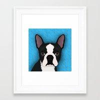 boston terrier Framed Art Prints featuring Boston terrier by Nir P