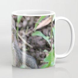 Cute Little Chipmunk in the Forest Coffee Mug
