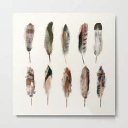 nature feathers Metal Print