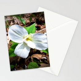 Double White Trillium Stationery Cards