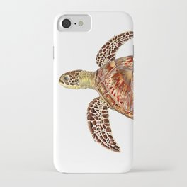 Green turtle Chelonia mydas iPhone Case
