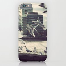 Pigeon Whisper    iPhone 6s Slim Case