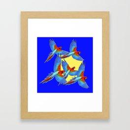 DECORATIVE FLOCK OF BLUE MACAWS & YELLOW Framed Art Print