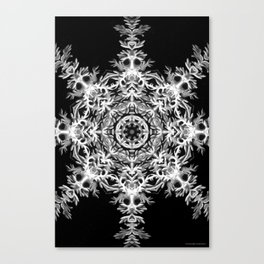 Black-and-White Abstract 38 Canvas Print