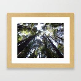 Look Up so FAR up Framed Art Print