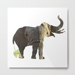 Elephant Cutout 2 Metal Print