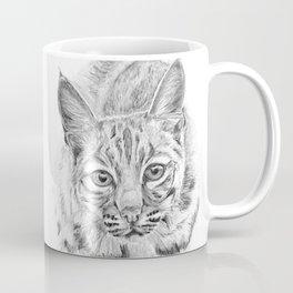On the Prowl :: A Young Bobcat Coffee Mug