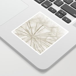 Dandelion Neutral Closeup Sticker