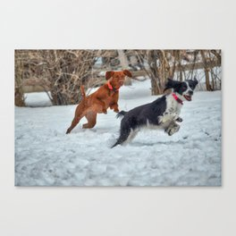 Jump And Run Canvas Print