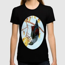Tui in a Kowhai Tree T-shirt
