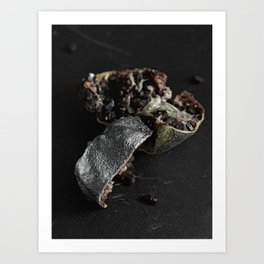 Silver Fruit 2 Art Print