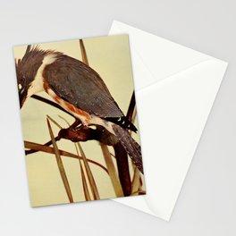Neltje Blanchan - Bird Neighbours (1898) - Kingfisher (Alcedinidae) Stationery Cards
