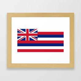 Hawaiian Flag, Official color & scale Framed Art Print