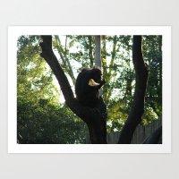 Pondering Primate Art Print
