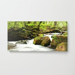 Forest Green Metal Print
