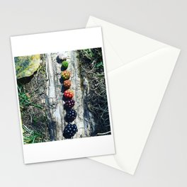 Wild Blackberry Life Cycle Stationery Cards