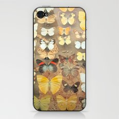 The Butterfly Collection I iPhone & iPod Skin
