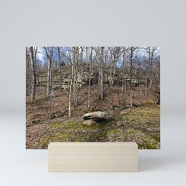 rock formation in the woods Mini Art Print