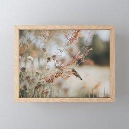 Hummingbird Love Framed Mini Art Print