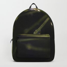 Like Little Diamonds Backpack