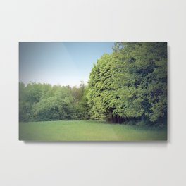 Green clearing in the woods Metal Print
