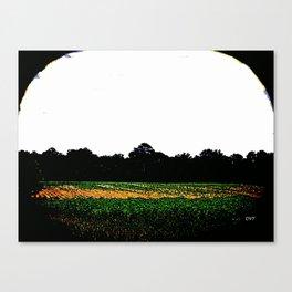 Farms 1426 Canvas Print