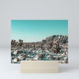 Vintage Cactus Snowfield // Winter Scene Red Rock Canyon Cacti Nature Snow Wilderness Photograph Mini Art Print