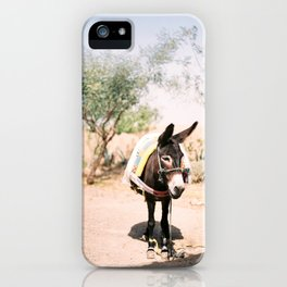 Cute donkey in the Agafay Desert of Morocco | Marrakech travel photography iPhone Case
