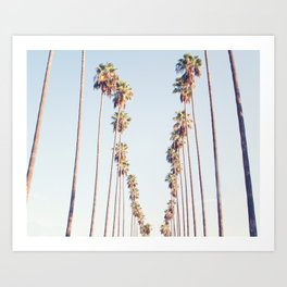 Palm tree stripes Art Print