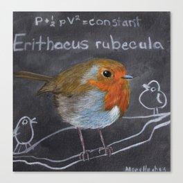 English Robin Painting Canvas Print
