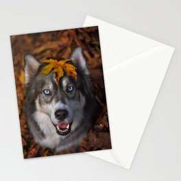 Happy Autumn Stationery Cards