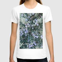 Botanical Gardens - Evergreen #335 T-shirt